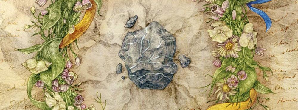 bluepootle